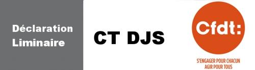 compte-rendu-reunion et déclarationCT DJS.jpg