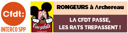 Capture rongeurs.PNG