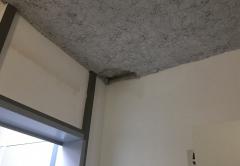 plafond.JPG