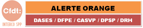 bandeau logo Dases Rifseep juillet 2019.PNG